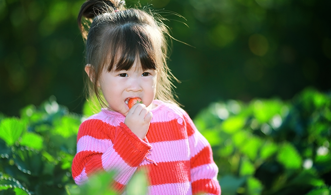 Photo of a young girl eating a strawberry